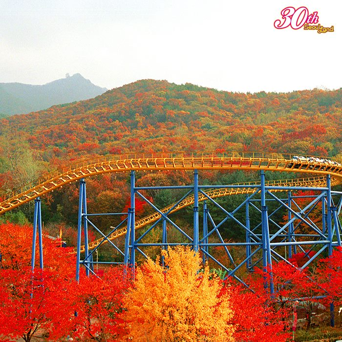seoul-land-theme-park-korea-gyeonggi-ticket