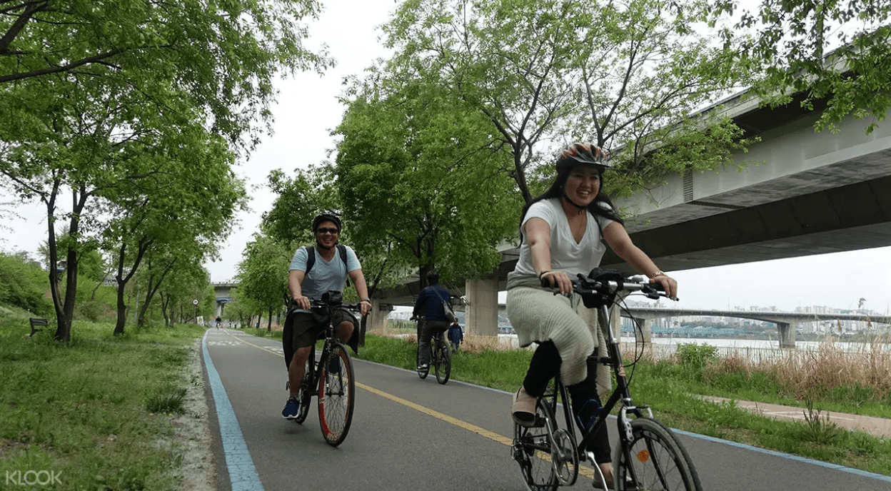 Tour Seoul on wheels! Screengrab from  Klook