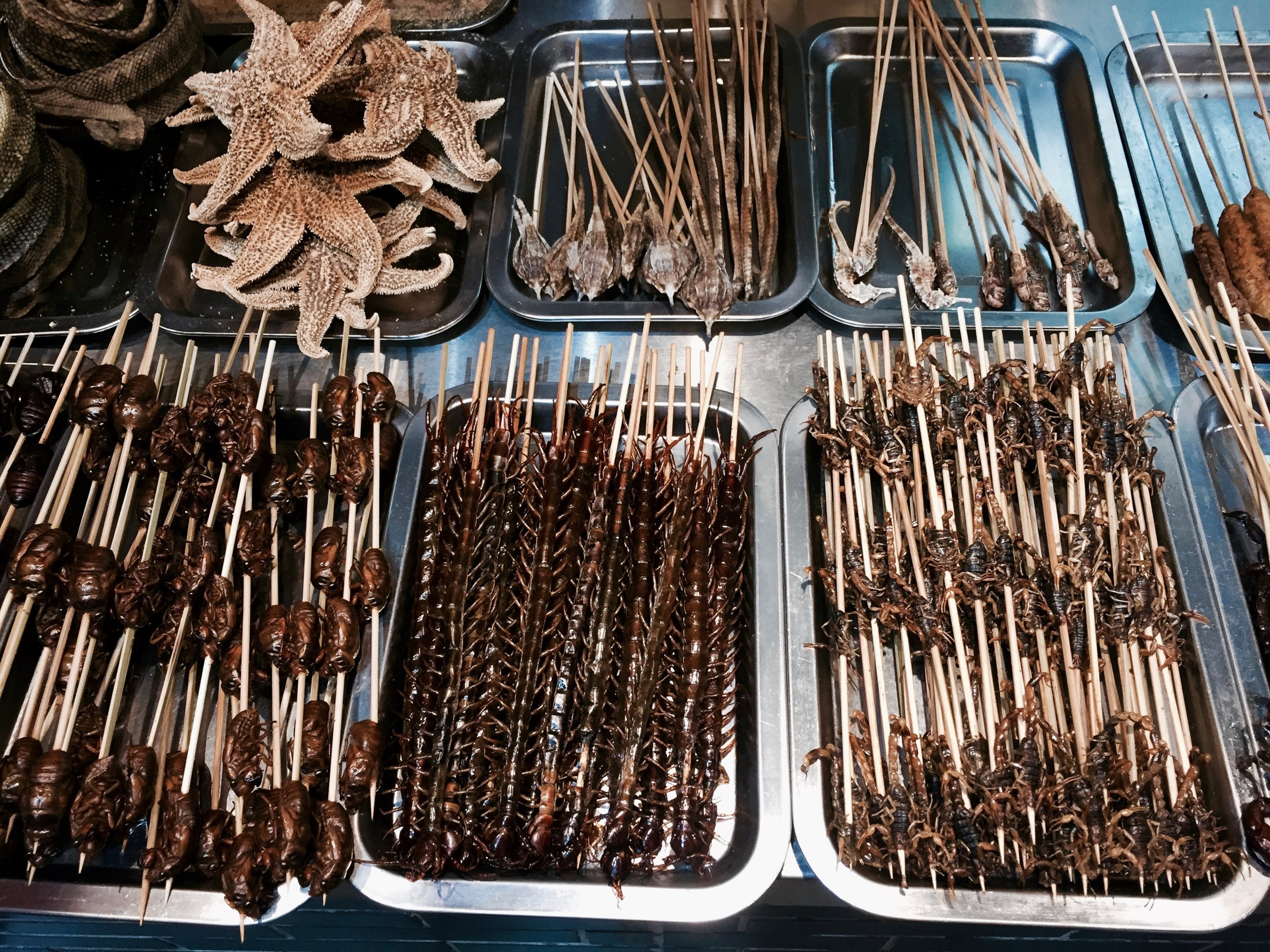 bugs on a stick food in hangzhou china