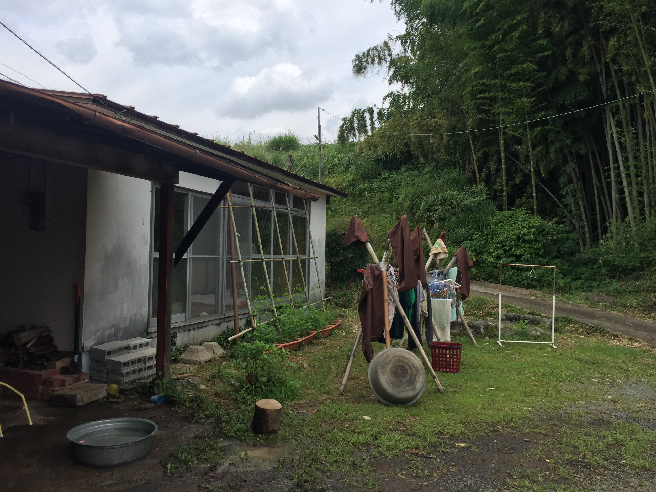 WWOOF in japan with a japanese country lifestyle in kikuchi, kumamoto on a cloudy summer day with bamboo forest and clothes drying