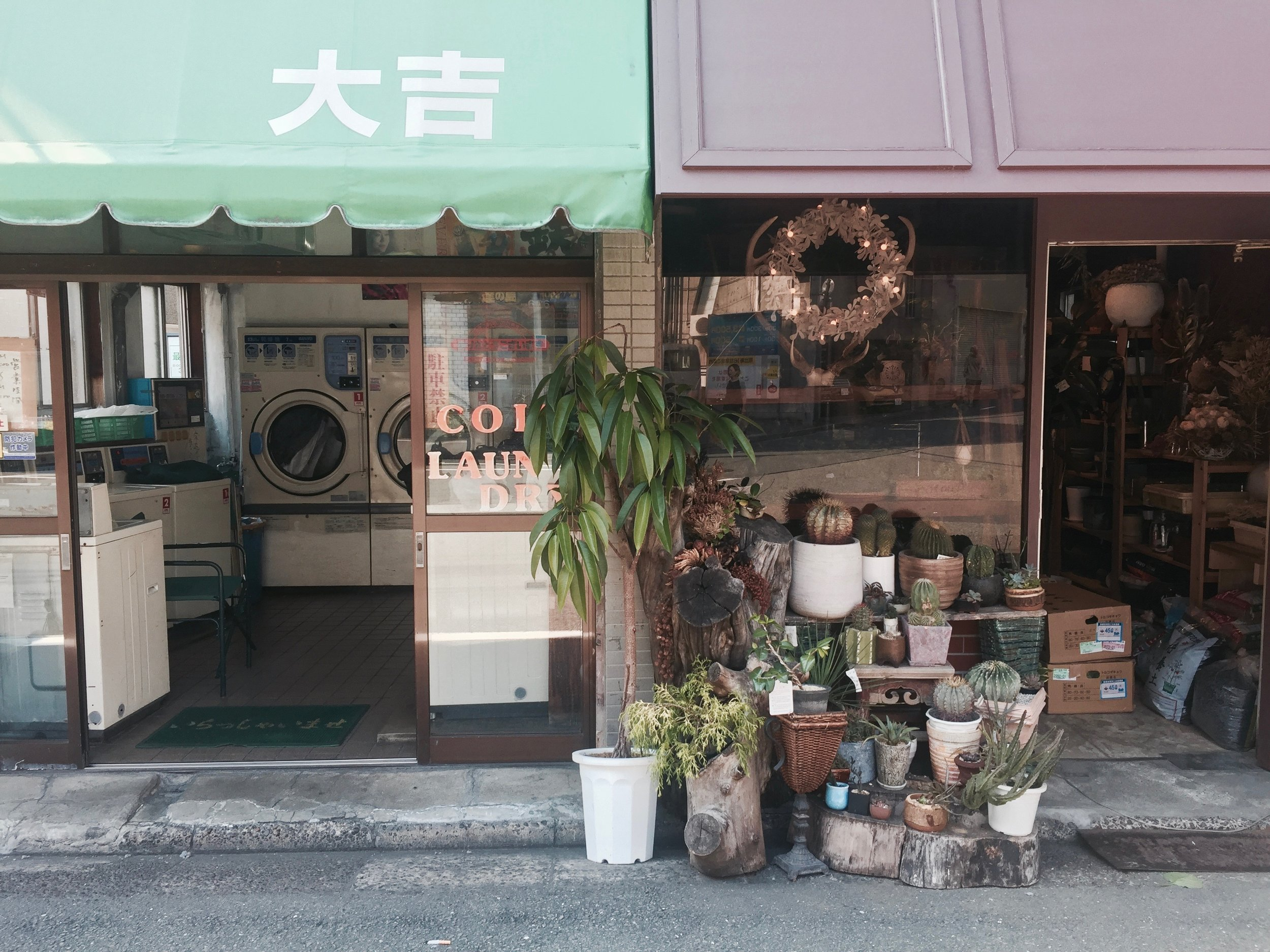 vintage feel laundromat succulent shop street in ebisu, tokyo japan