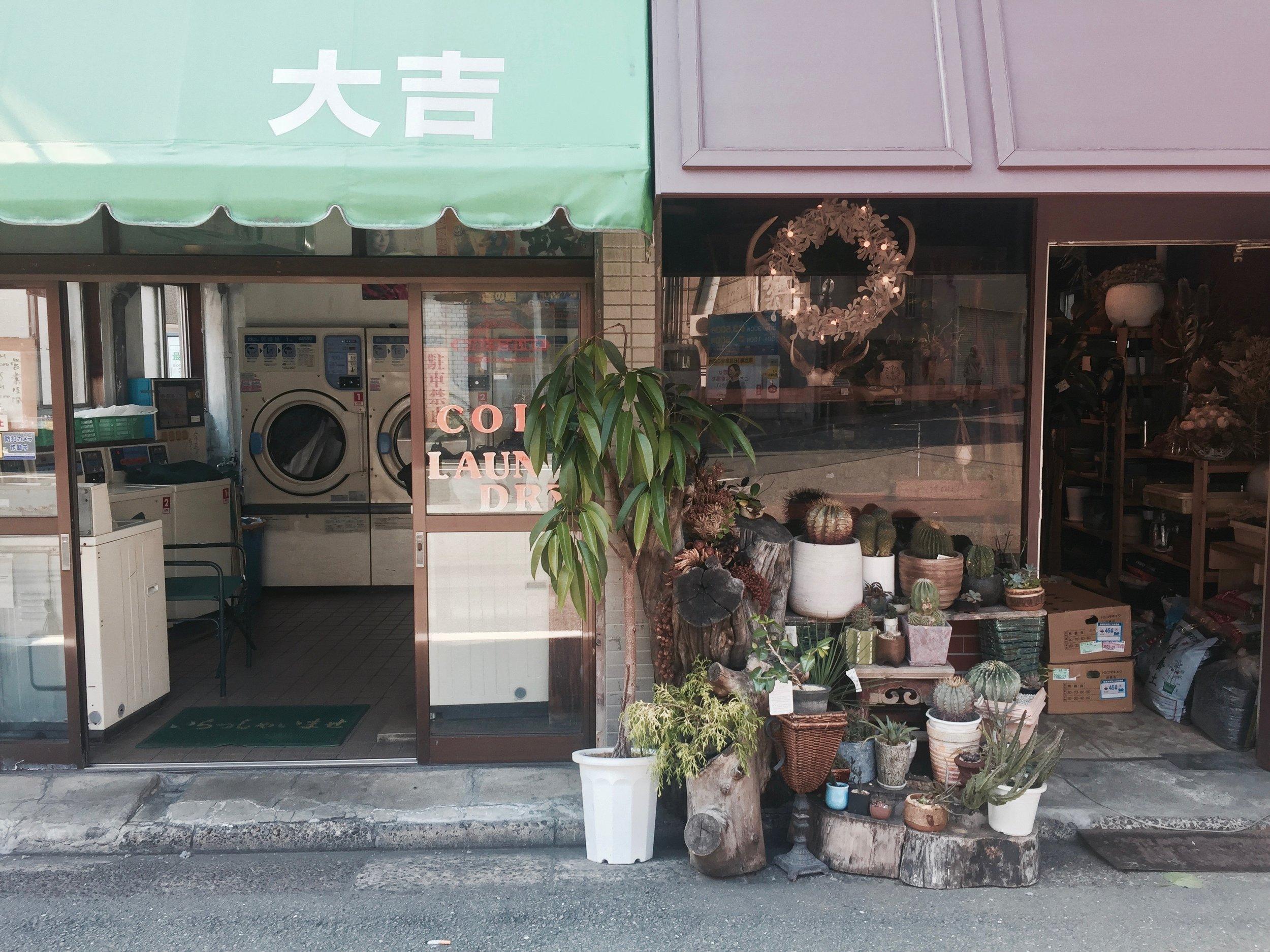 Plant shop and laundromat in Ebisu