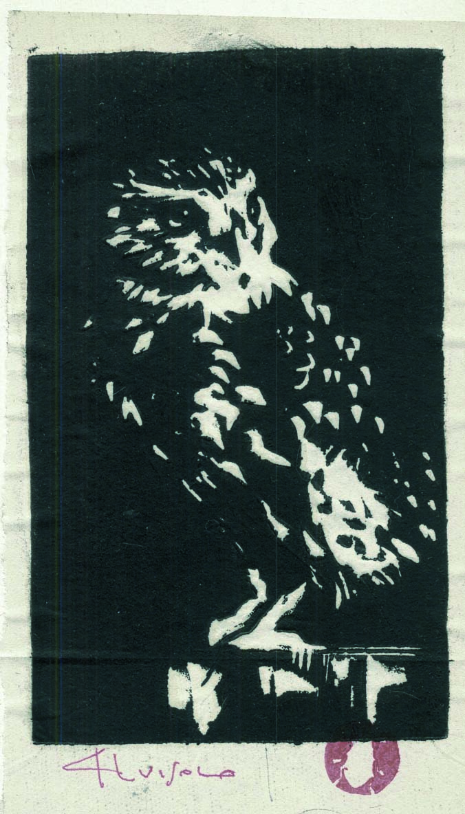 per D, 2008