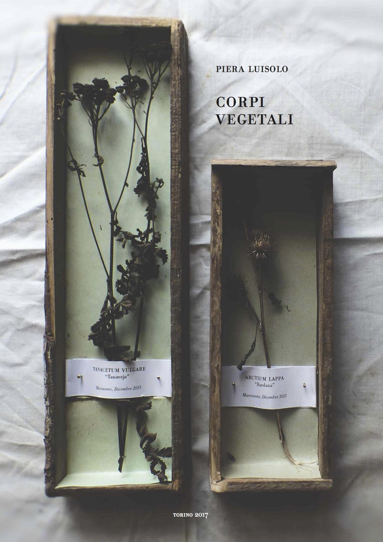 Corpi vegetali, 2016