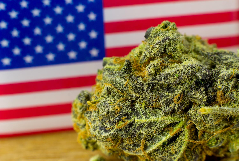2019 - året USA legaliserer cannabis? -