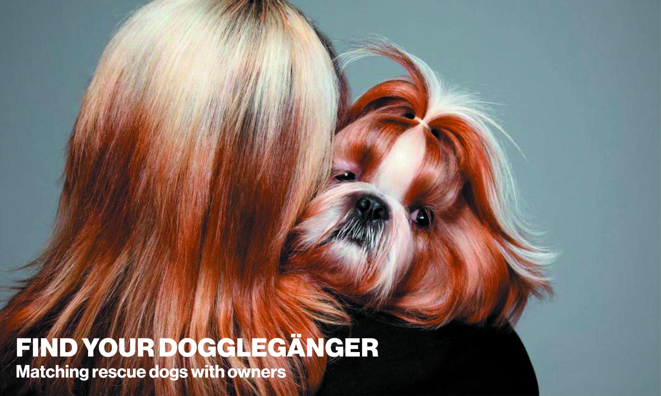 Duncan_Brooks_Doggleganger