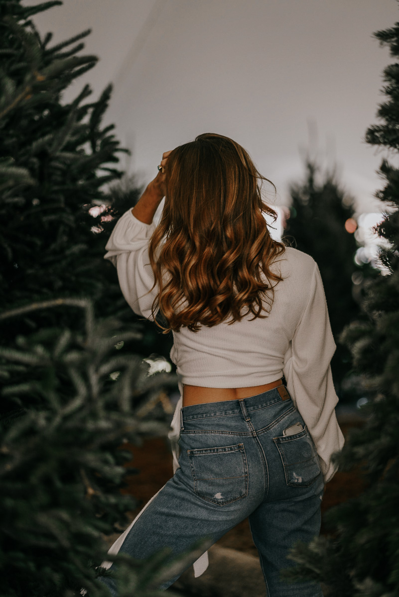 Christmas tree photoshoot-fort myers photographer-Rocky-314.jpg
