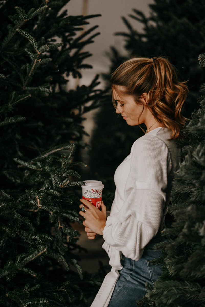 Christmas tree photoshoot-fort myers photographer-Rocky-567.jpg
