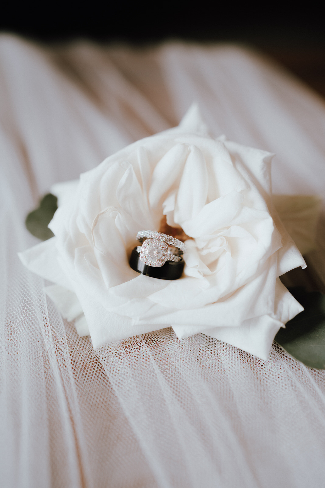Club at the Strand Wedding- Naples Florida Wedding Photographer- Michelle Gonzalez Photography- Desiree and Bryan-21.JPG