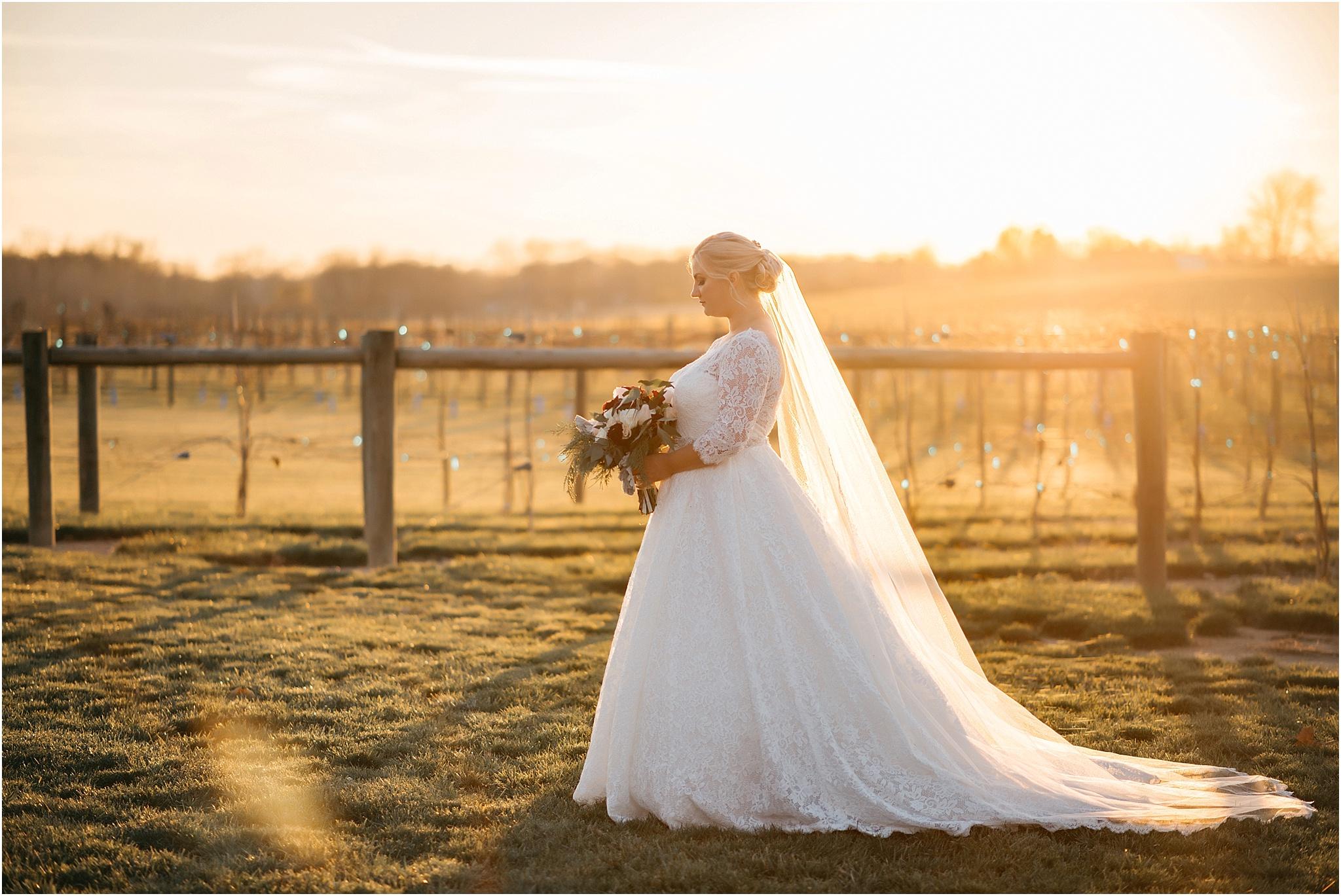Indianapolis-Wedding-Photographer_0723.jpg