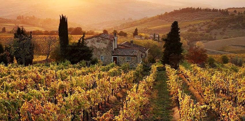 Gastronomic-tour-Italys-Finest-08.jpg