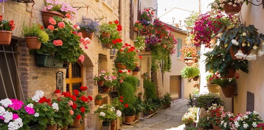 Gastronomic-tour-Italys-Finest-10.jpg