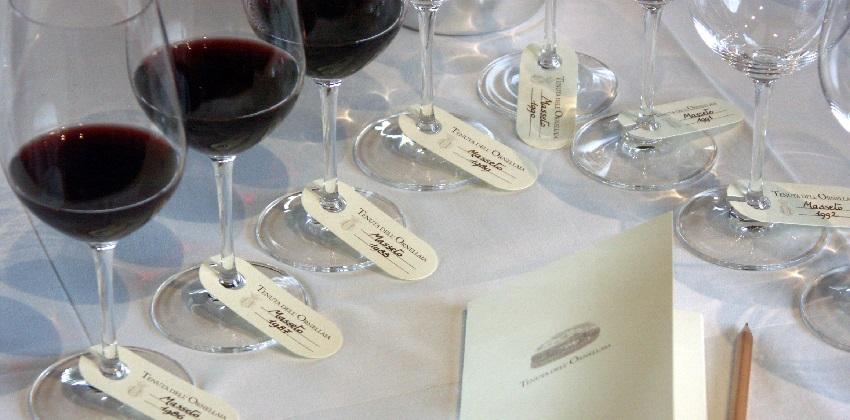 Supertuscans-wine-experience-Italys-Finest-12.jpg