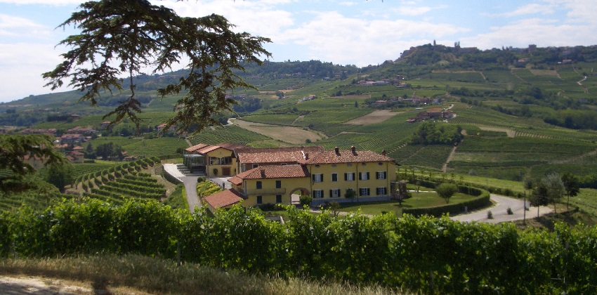 Barolo-and-white-truffle-hunt-Italys-Finest-9.jpg