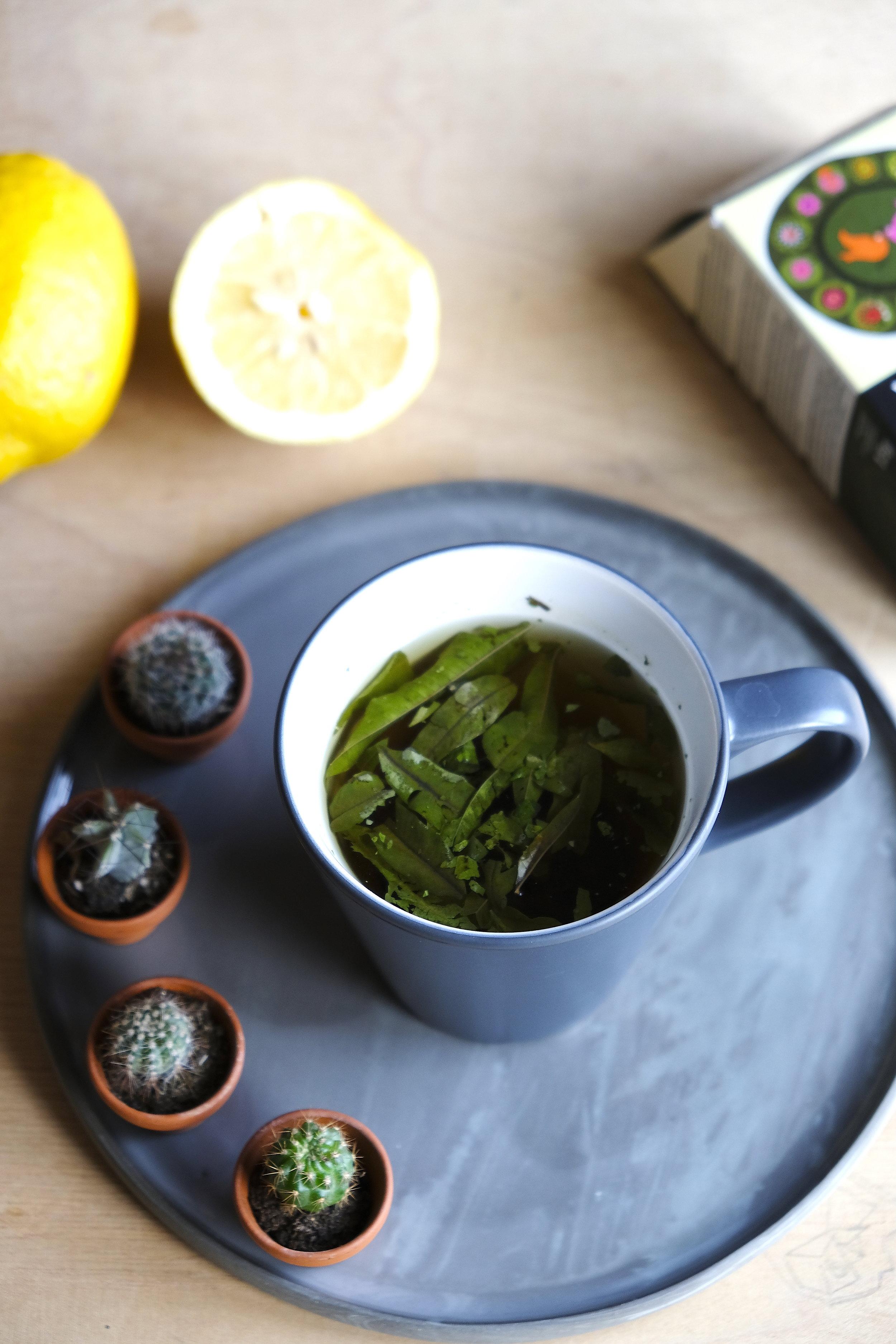 Ceai Verbena lamaie_The Nature Project.JPG