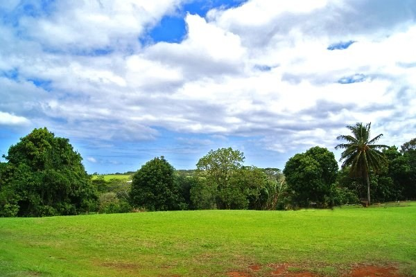 3889-A OMAO ROAD - Koloa, HI - MLS#296347   - $399,000MLS:296347 | Land | Vacant |Fee Simple, Full Ownership | Bed, Bath | Living: Sq Ft | Land: 32,539 sqft | Built: | 4-2-7-4-38Contingent DOM:582CSB: 2.5+GET,Restrictions: None