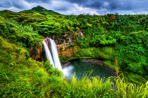 Explore The Garden Island of Kauai... - ...Learn more about activities, services, and weather.