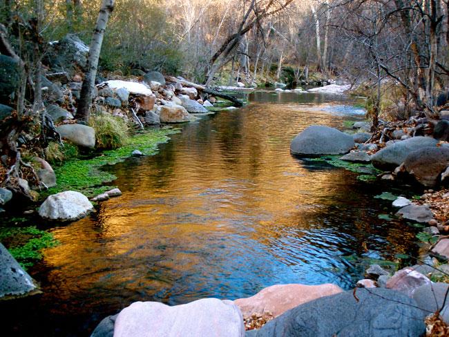 fossil-creek.jpg
