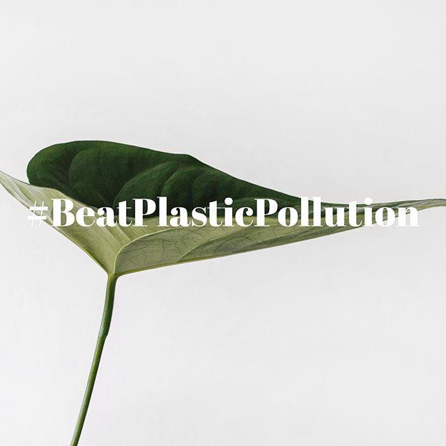 Årets Environtment Days tema är #beatplasticpollution  Vi kan alla göra skillnad på olika sätt. Läs mer om hur du gör skillnad på unenvironment.org. Länk i vår profil. . . Photo credit: @aesence . #sustainability #hållbarhet #consciouslabel #conscious #takeaction #environmentday2018