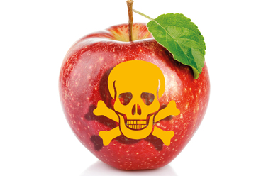 - Should you fear your apple?http://mobile.wnd.com/2017/11/latest-poison-apple-scare-fake-news/