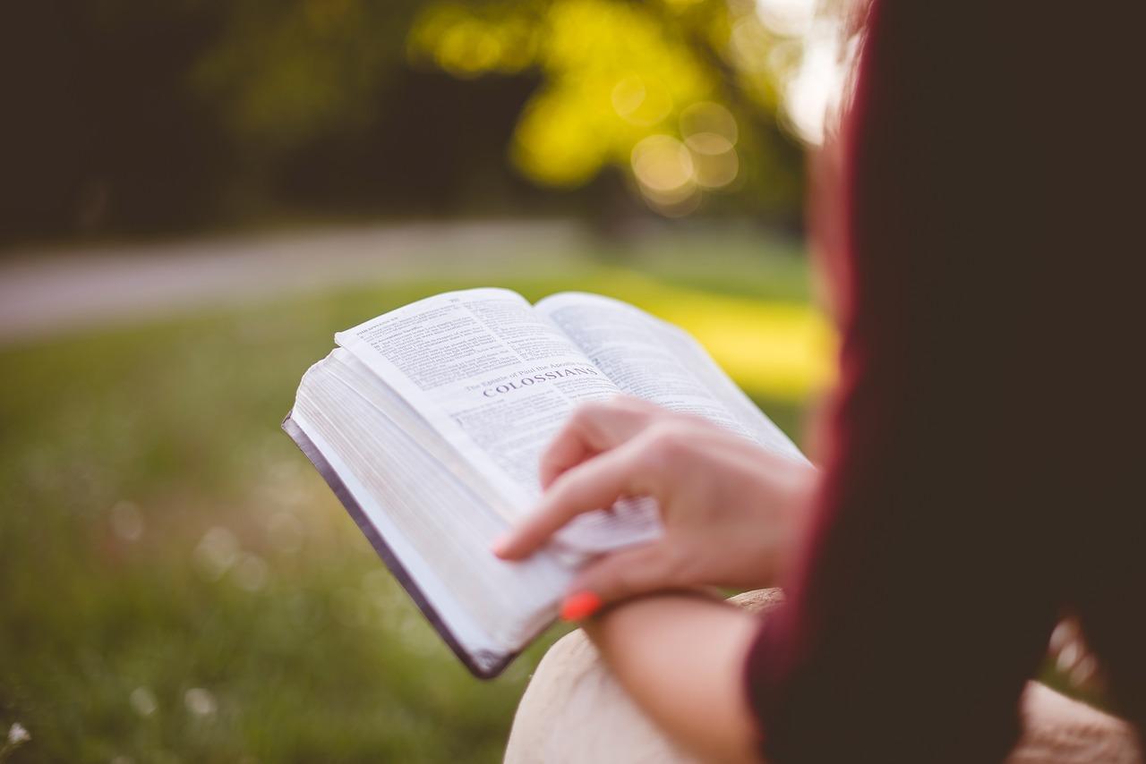 pixabay.com/en/people-girl-sitting-reading-book-2598752/