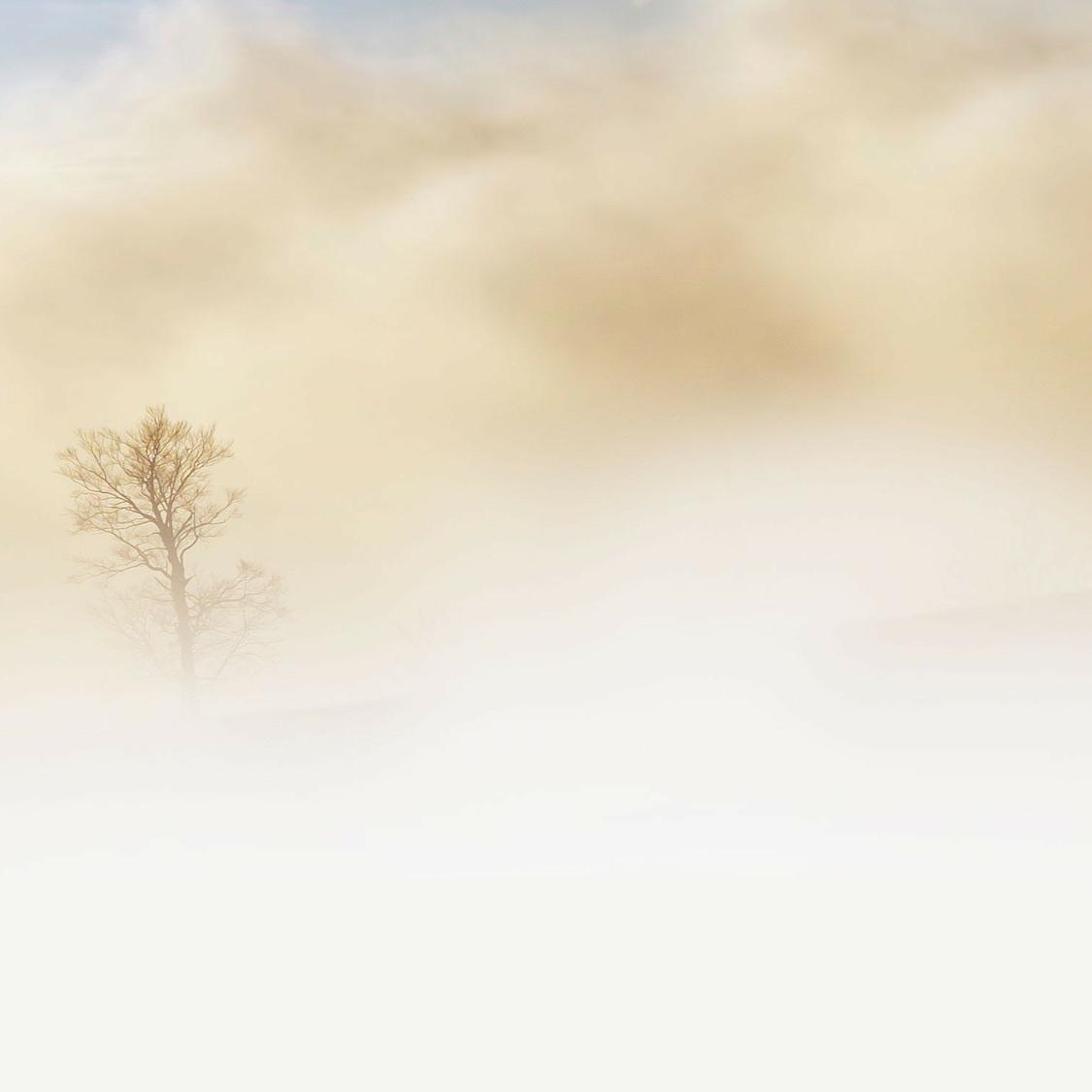 fog-240075_1920.jpg