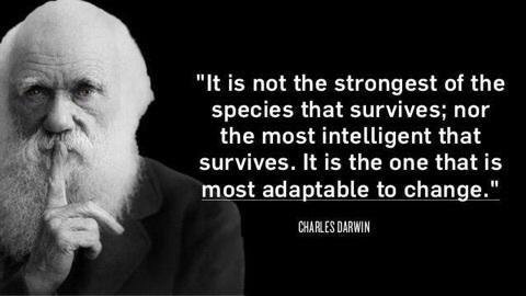 darwin quote.png