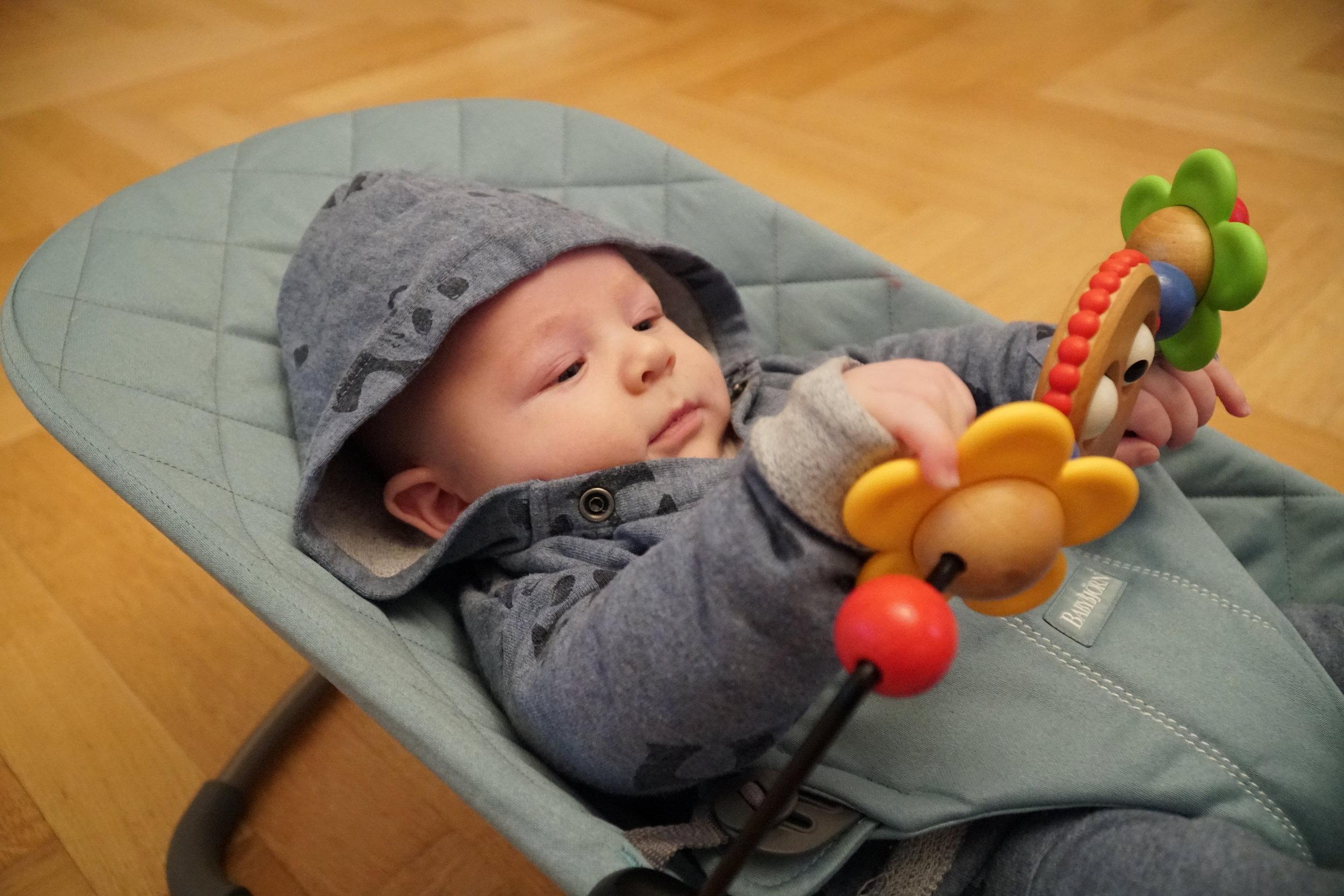BabBjörn Babywippe Bliss
