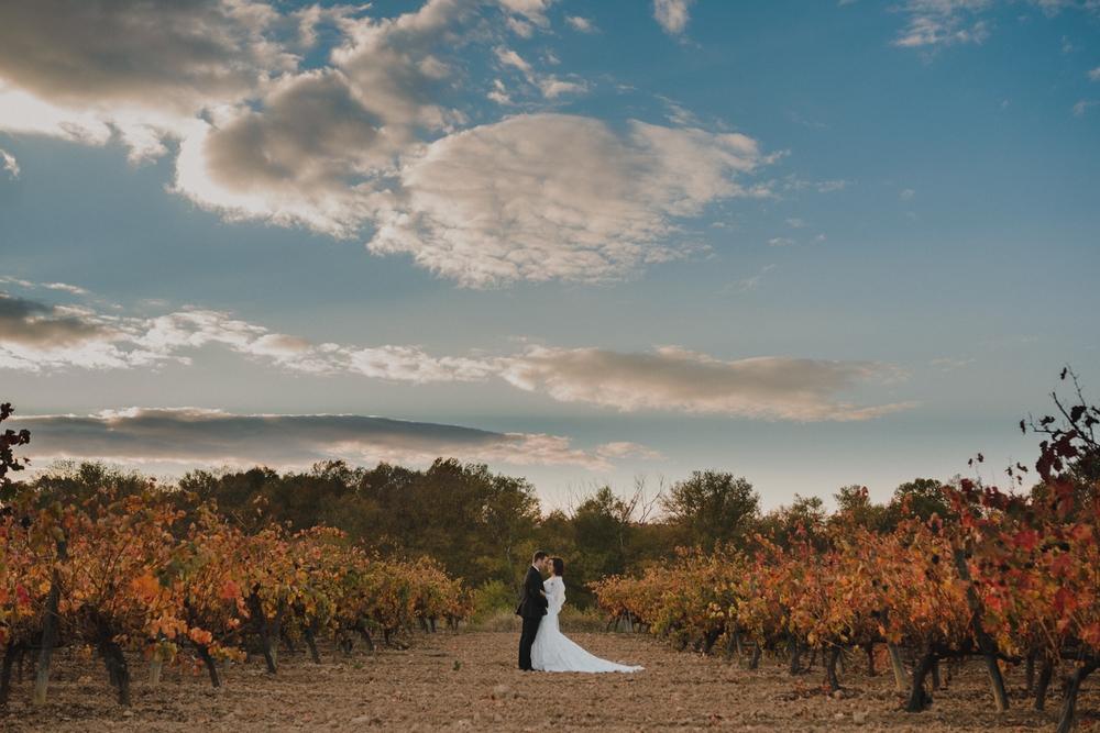 pareja de novios abrazados entre viñas