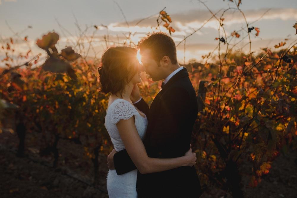 novios entre viñedos en reportaje postboda