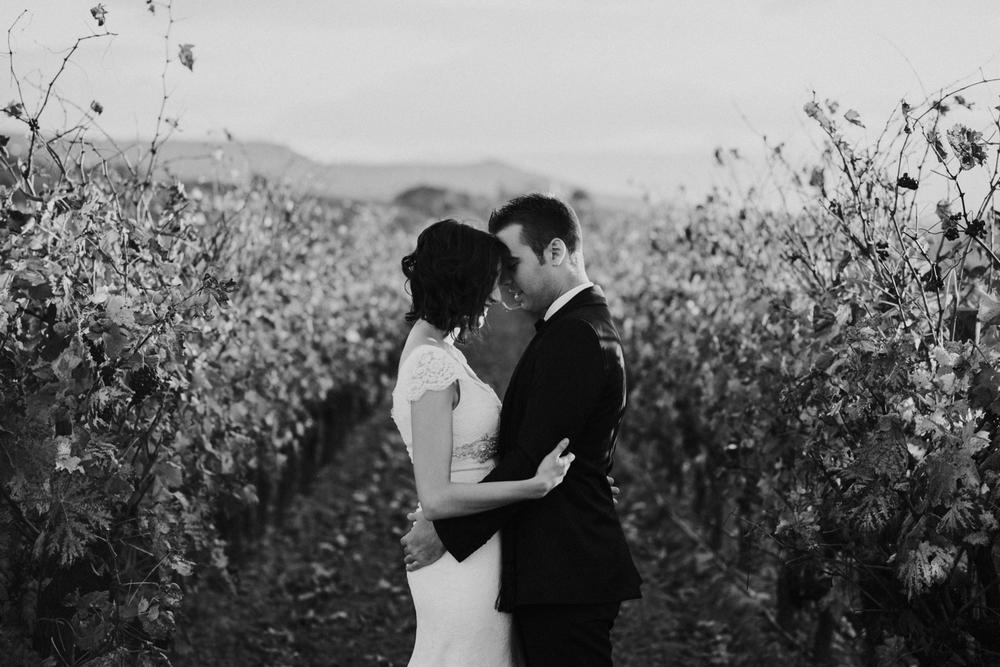 abrazo de novios entre viñedos en postboda