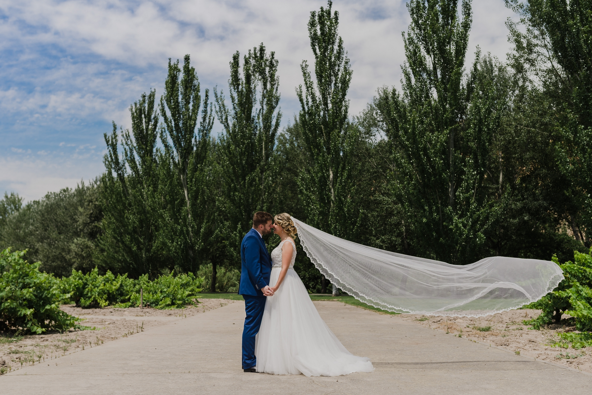 pareja novios postboda retrato parque ebro logroño