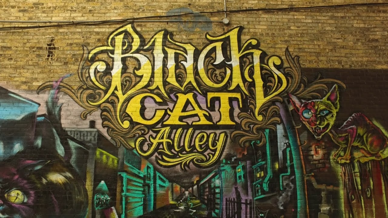 Black Cat Alley Murals in Milwaukee, WI