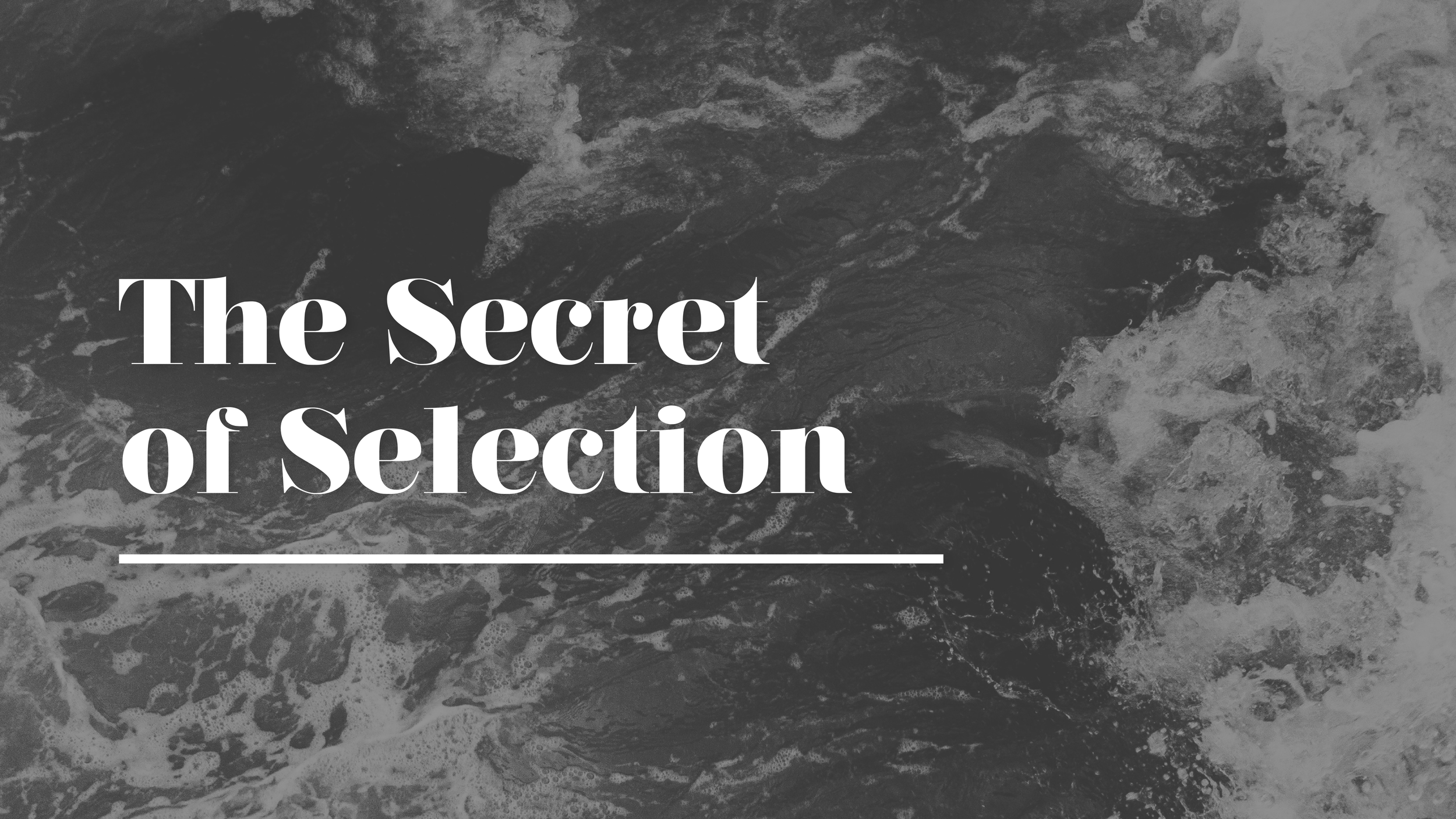 Messages:  The Secret of Selection