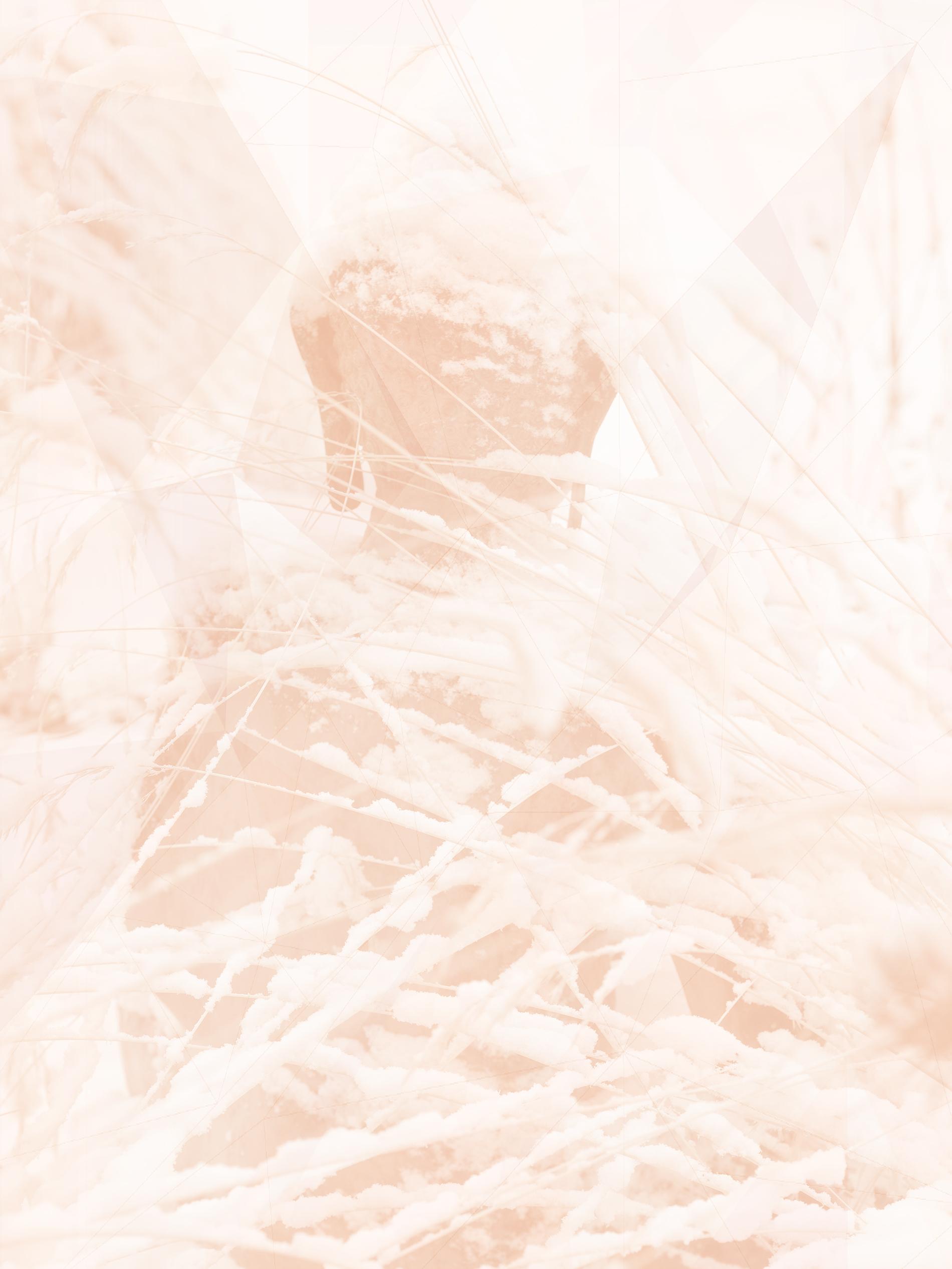 buddha-snow-010067-edit.jpg