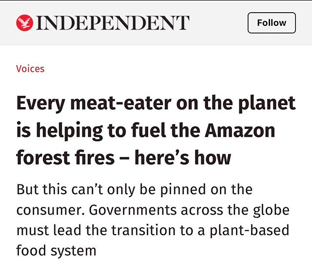 "I'd love the media to make better headlines. Eat less meat for sure and definitely do not sponsor CAFOS (concentration camps for animals that assault the environment essentially) if you're going to. Always support 100% grassfed, grassfinished meat from a small rancher near you. Their work in partnership with cattle and soil can be precious. Today we cannot talk about ""meat"" or ""vegetables"" in generic terms, there's no such thing. It is very important that we open this conversation to the more complex and dynamic relationship between animals, soil, ecosystems, and weather. Stop deforestation? For sure. . . #regenerativeagriculture #grazing #regenerativegrazing #buffalo #cows #cattle #nocafos #nofeedlots #soil #carbon #ecology #globalwarming"
