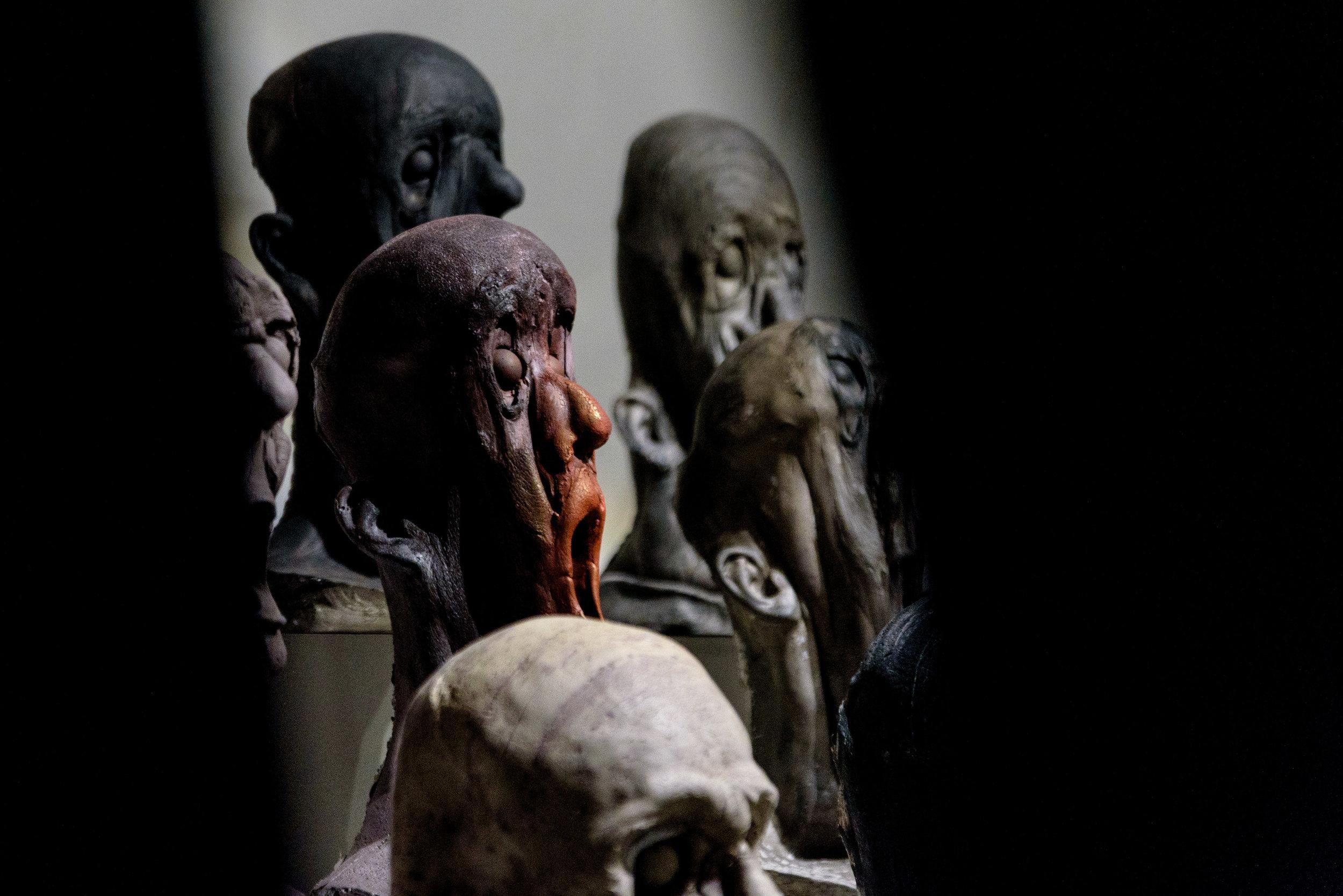 Humanorium oddities