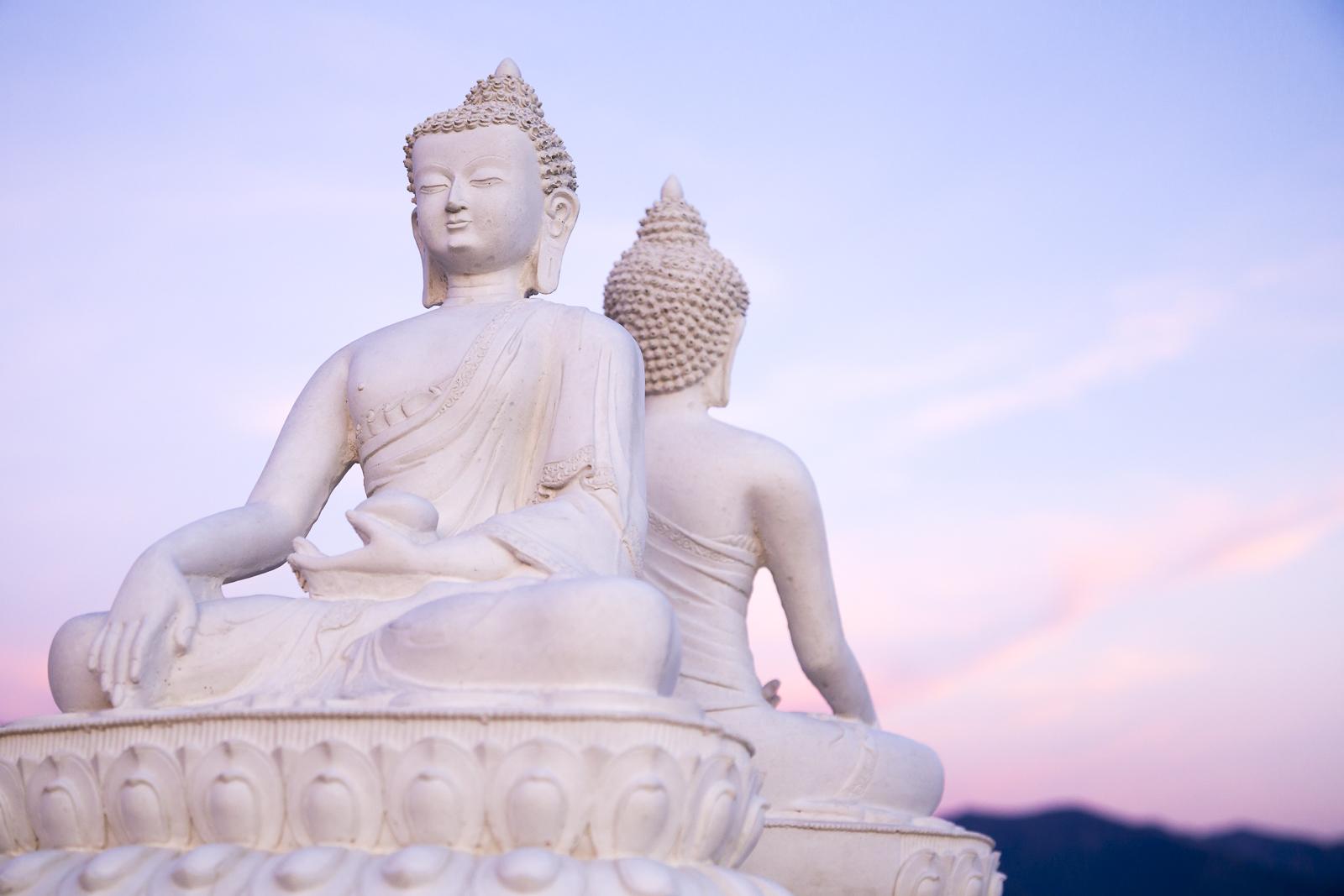 1000 Buddhas.jpg
