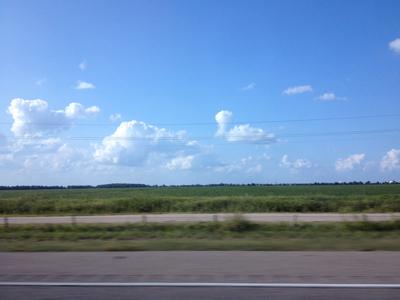 あとはただただ平原、もしくは畑