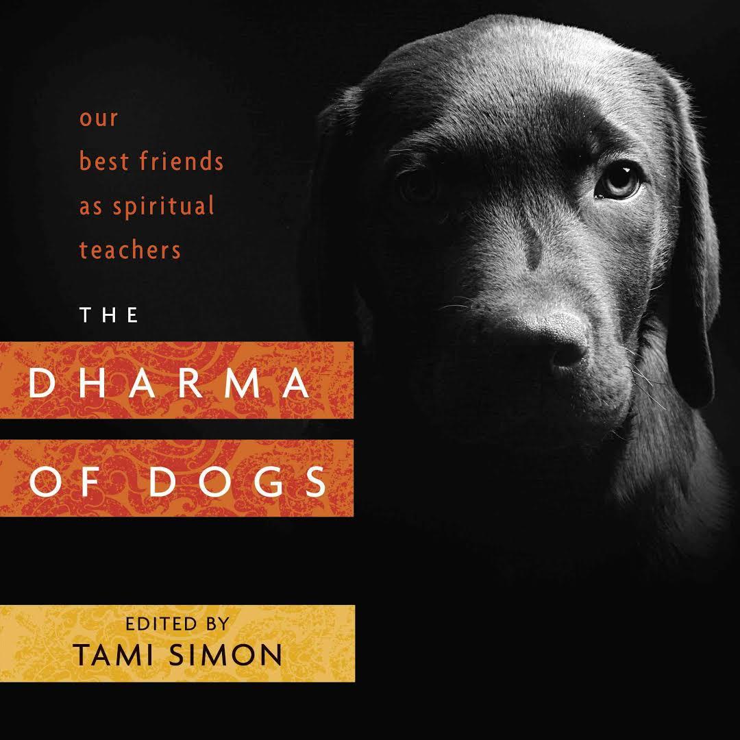 The Dharma of Dogs.jpeg