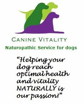 Canine Vitality.JPG