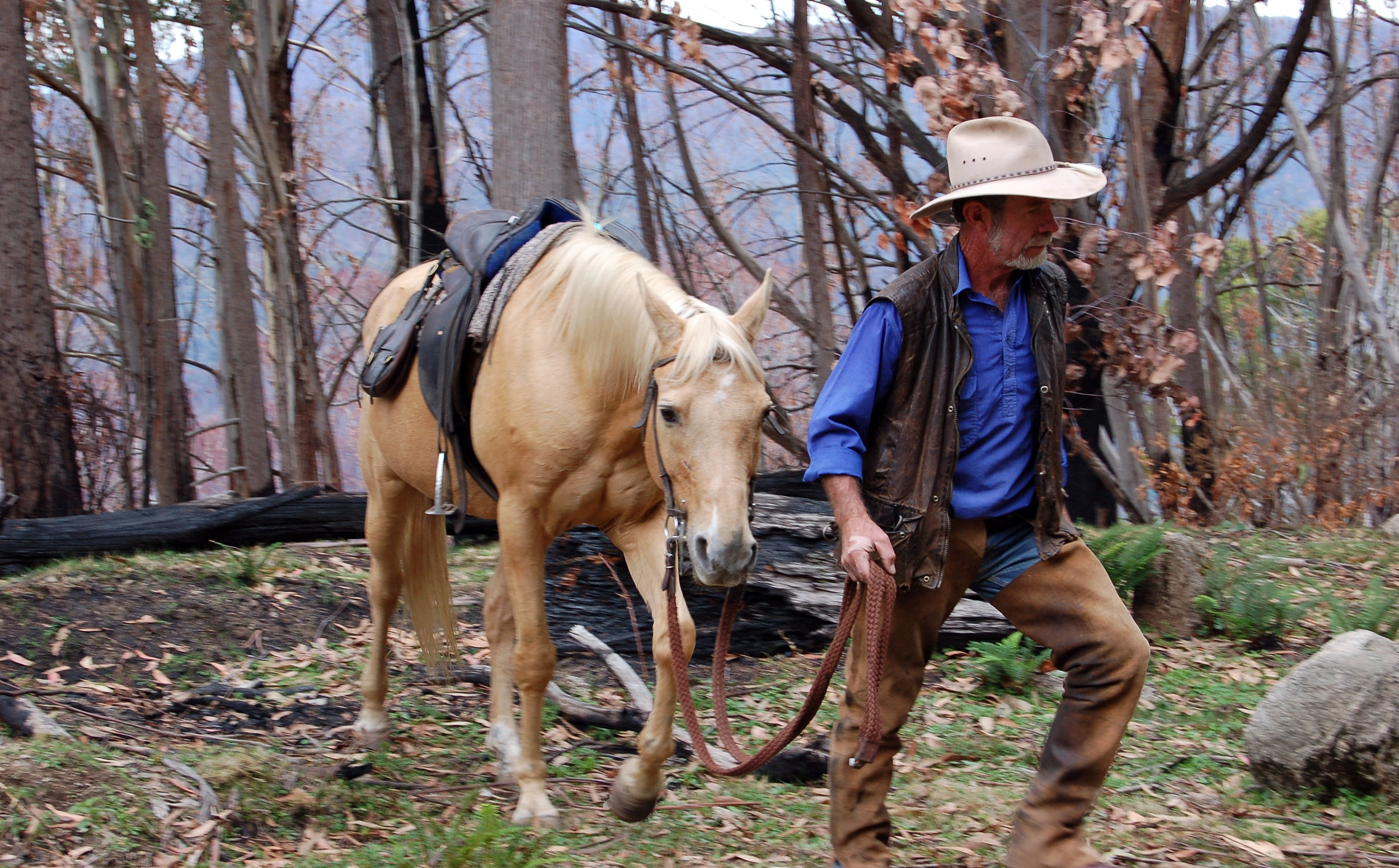 About HCH - High Country Horses is nestled in the foothills of Merrijig in North East Victoria; the gateway to the Victorian High Country.Owner/operators Chris and Fiona Dunlop have over 93 years of horse experience between them and have a passion for the high country and the integrity of the environment in which they are privileged to operate.  They take great pride in their horses and in sharing the magic of the mountains with everyone that rides with them.Our horses are tried and true mountain horses, as honest as the day is long.  We have horses to suit every level of rider and the flexibility to adjust the ride according to your ability.  Our tour guides are professional horseman and women with a sound knowledge of the environment as well as good knowledge of local folklore.Our aim is to provide an adventure that takes in as much of the magnificent high country as we can ensuring our guest have a memorable, but most importantly, a safe experience.Back to the top