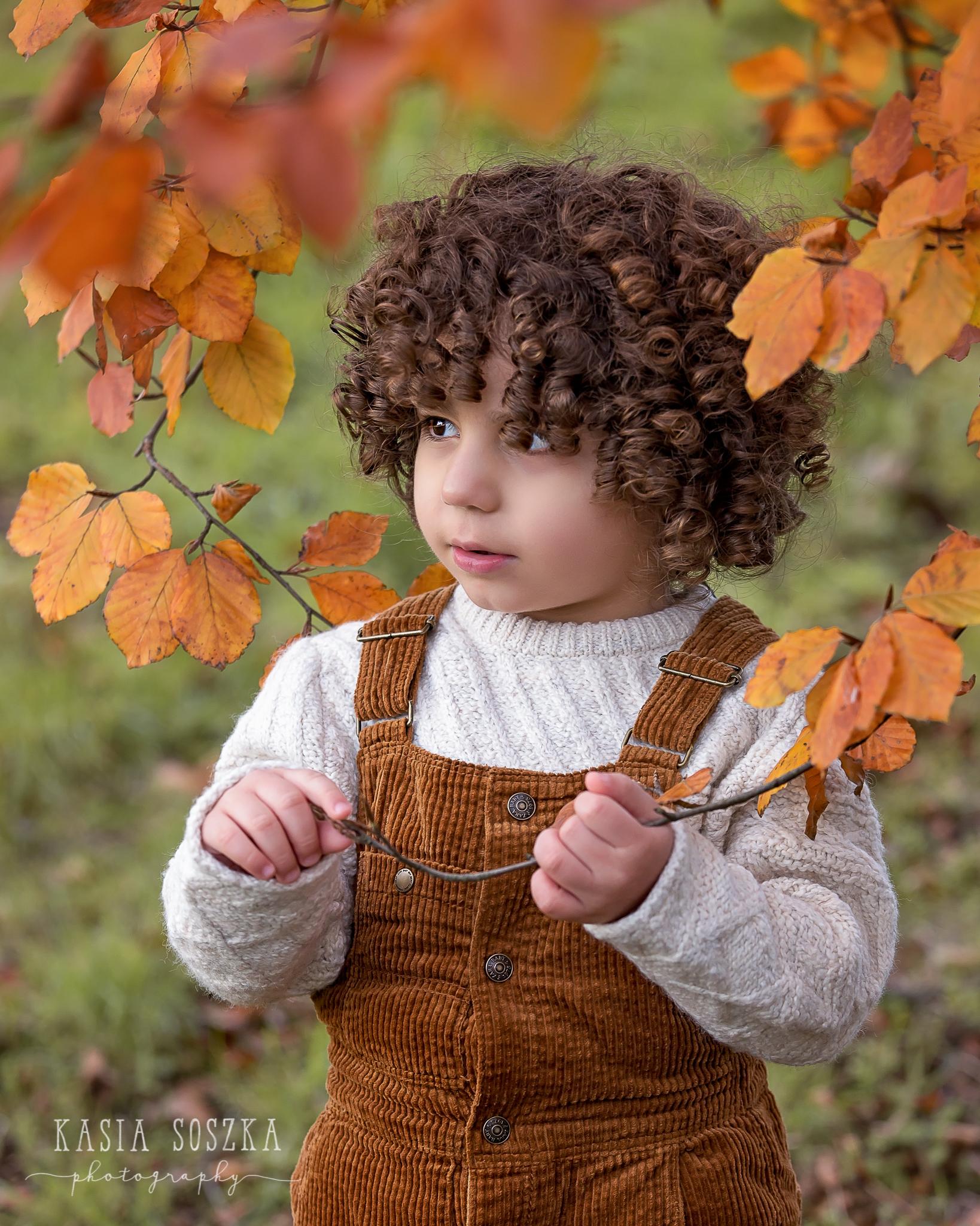 Yorkshire children photography: cute little boy with dark curly hair standing under autumn tree.