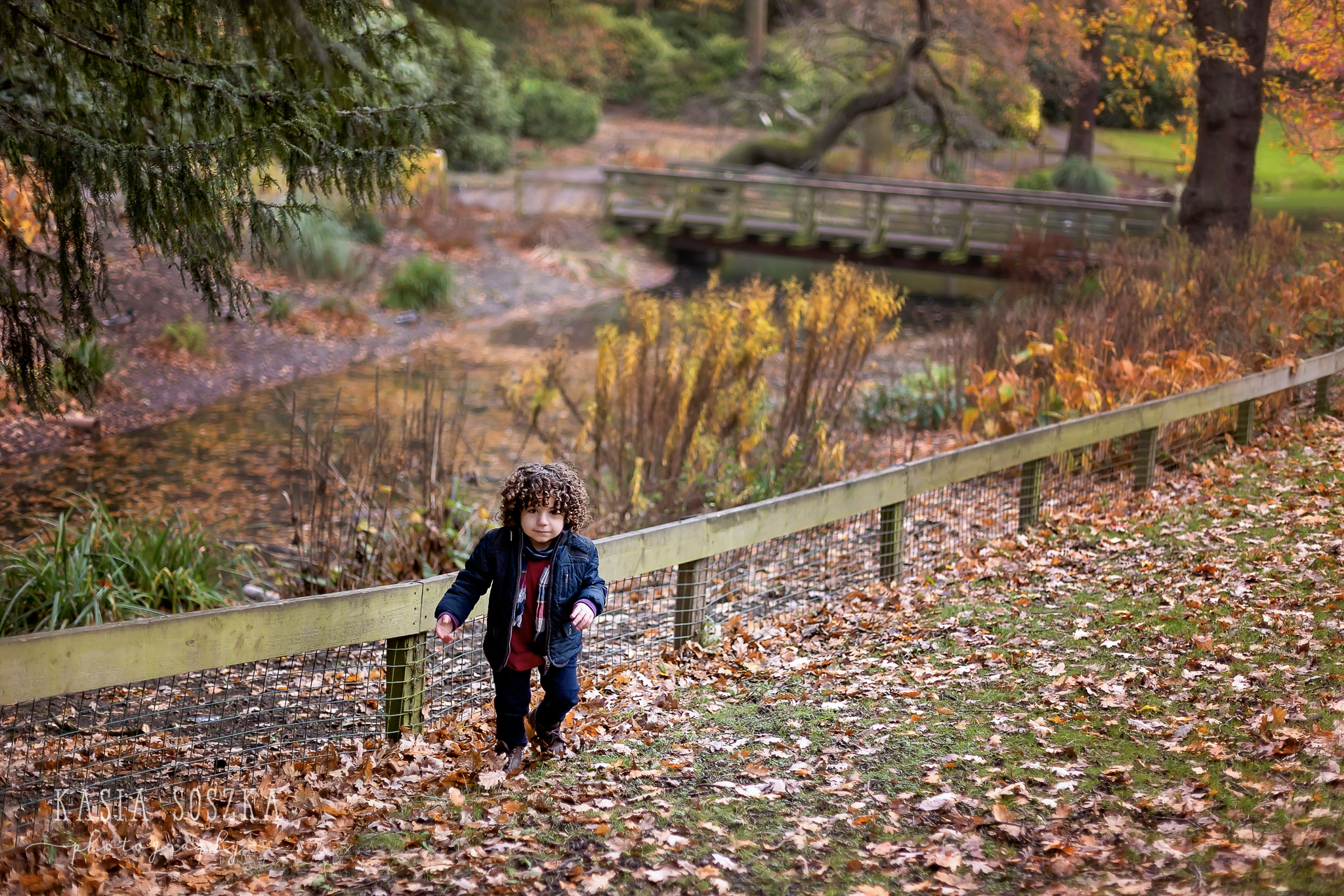 Child outdoor shot in Leeds: cute litte boy with dark curly hair walking through the park covered in Autumn leaves.