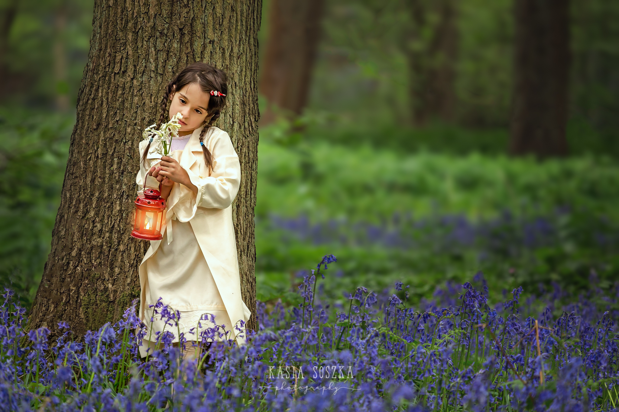 Yorkshire children photography: little girl holding bluebells and a red lantern in a bluebell forest