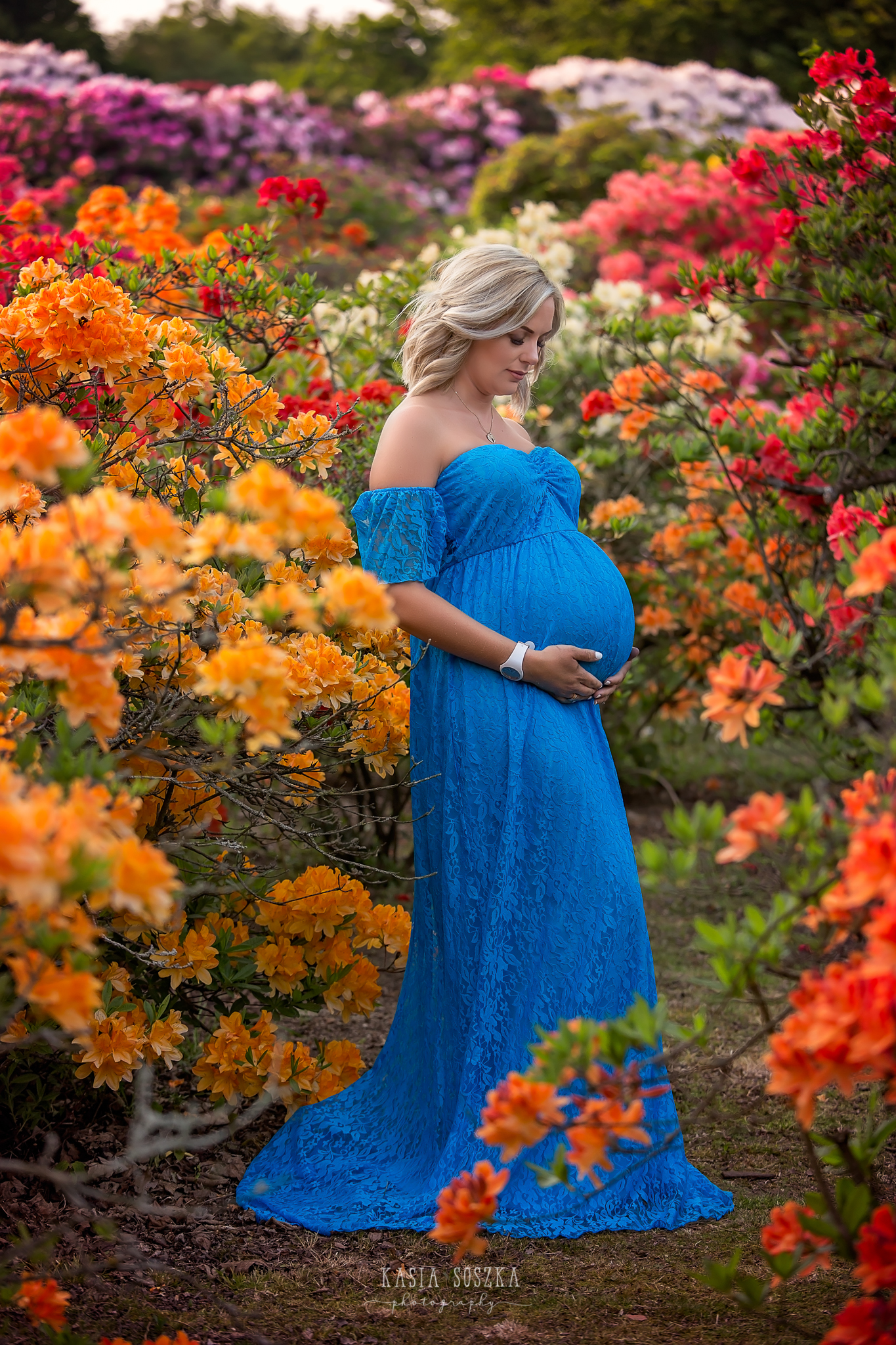 Maternity photography Harrogate: beautiful blond pregnant woman in a long blue dress surrounded by colourful rhododendron flowers.