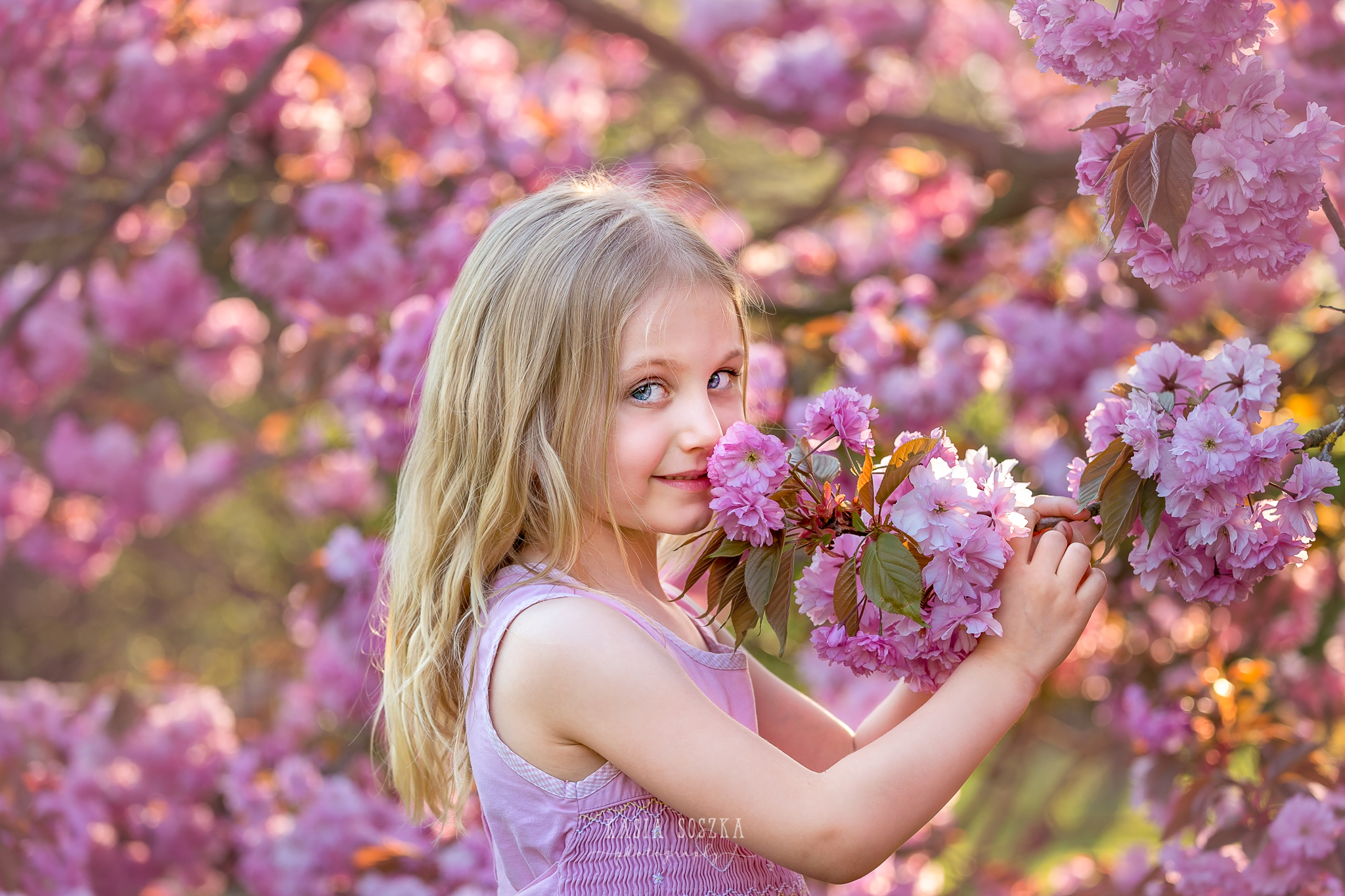 Leeds child photography Bradford child session York children photography: pretty little blond girl in a pink dress smelling cherry blossoms