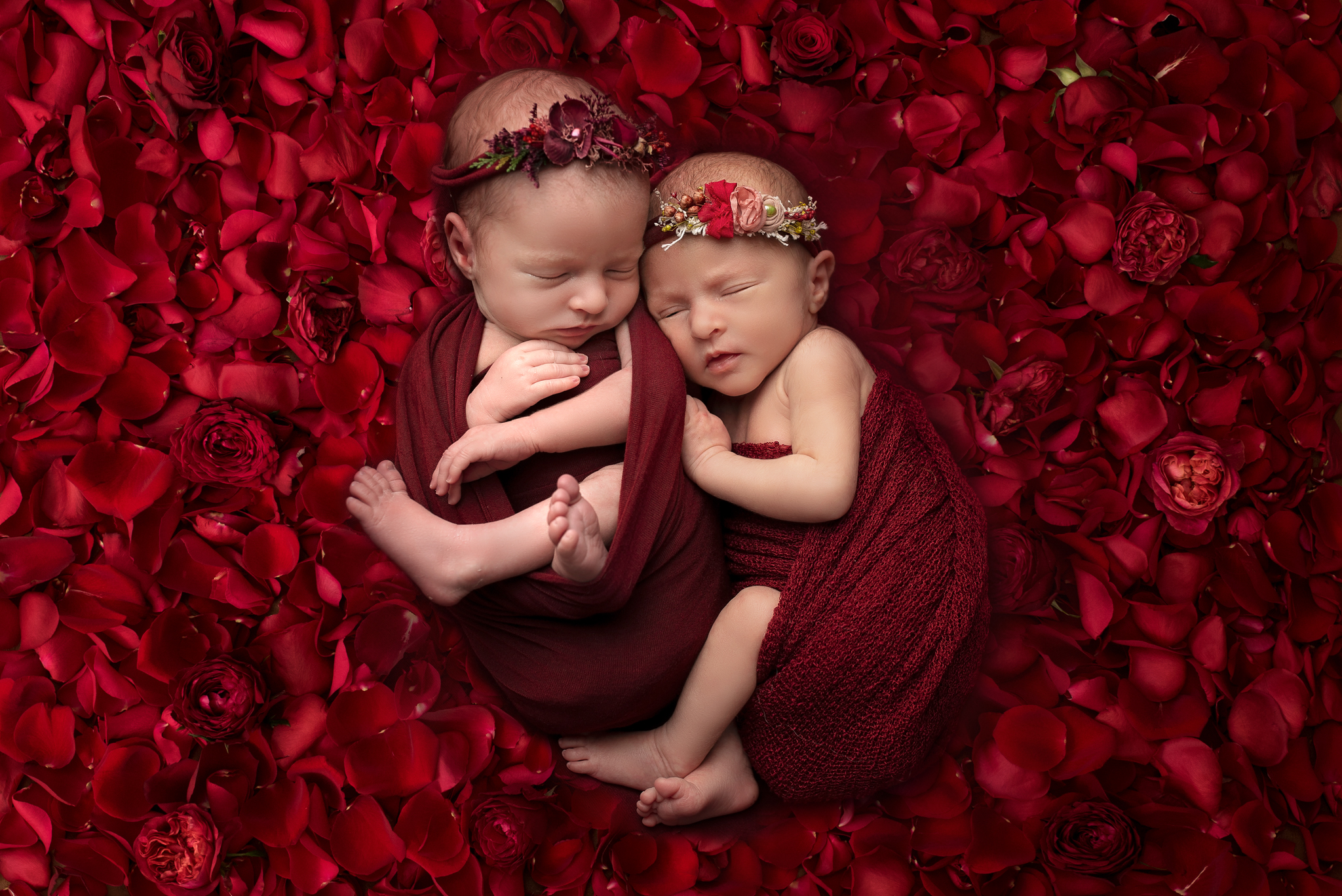 Newborn twin photographer Leeds, newborn photographer Leeds-York-Harrogate-Bradford, Yorkshire: winter theme twin session in Leeds, Yorkshire. Twin baby girls sleeping on a bed of roses