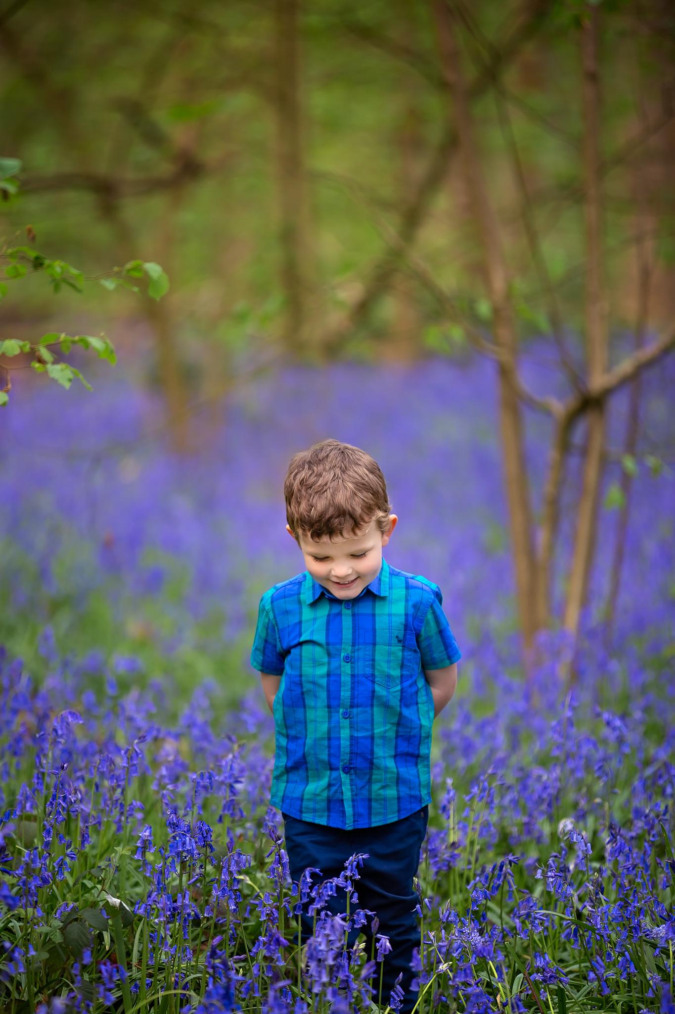 Child photography Leeds, York, Harrogare, Bradford: cute little boy walking though a bluebell wood