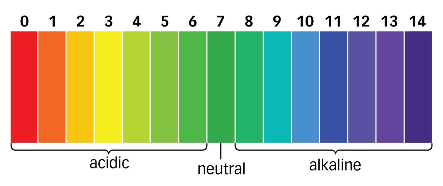 pH scale noora
